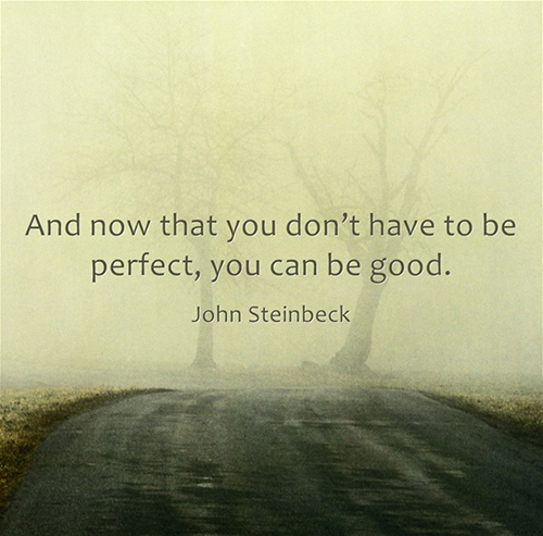 Dont Have to be Perfect - Steinbeck